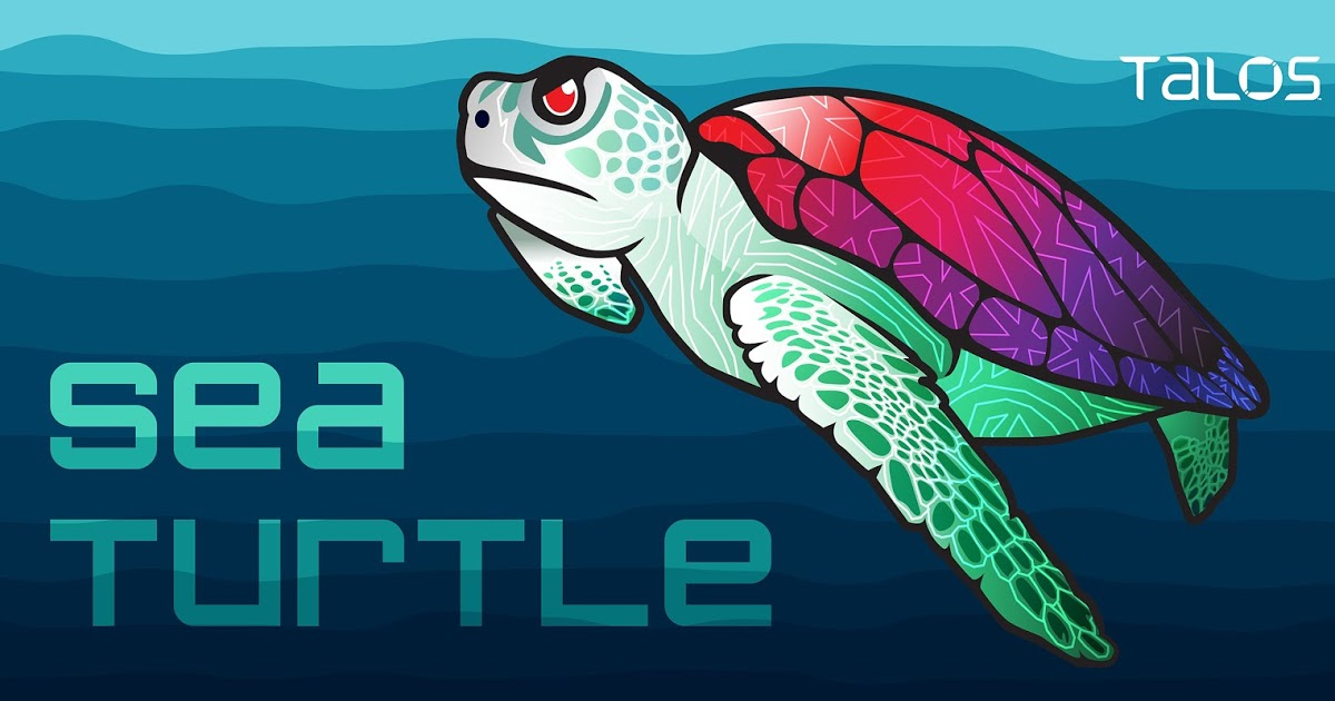 Sea Turtle keeps on swimming, finds new victims, DNS hijacking techniques